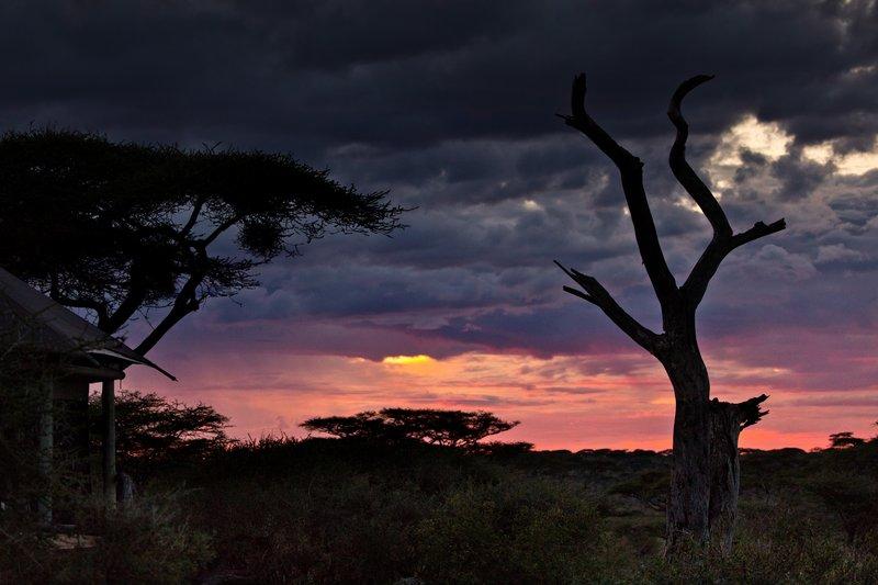 large_Sunset_Over_Ndutu_74.jpg