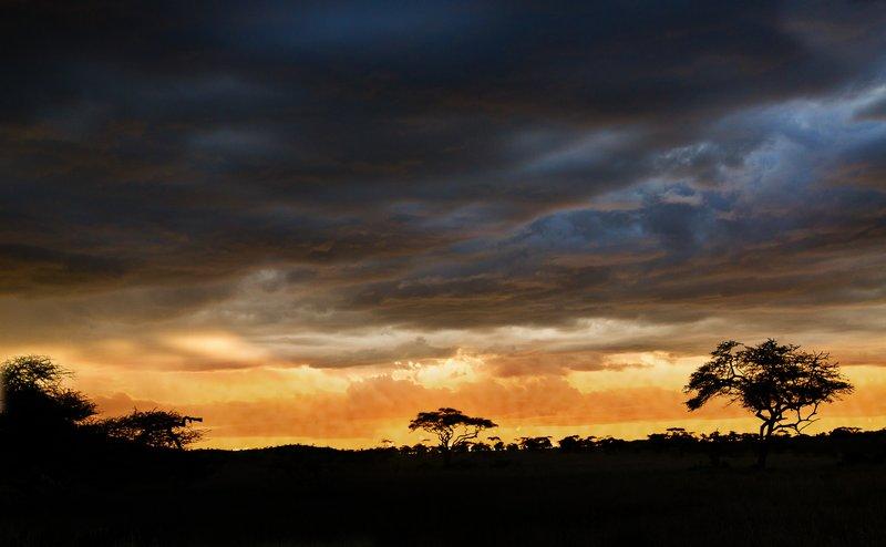 large_Sunset_over_Seronera_1.jpg