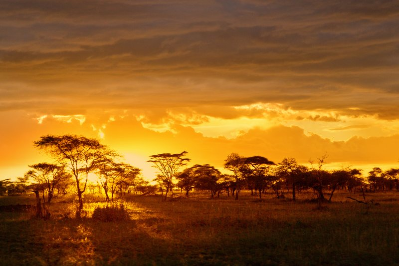 large_Sunset_over_Seronera_11.jpg