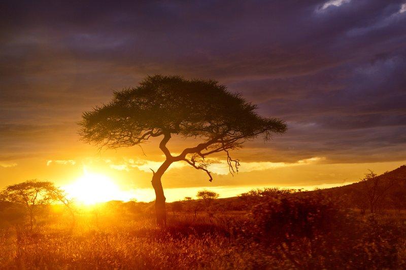 large_Sunset_over_Seronera_12.jpg