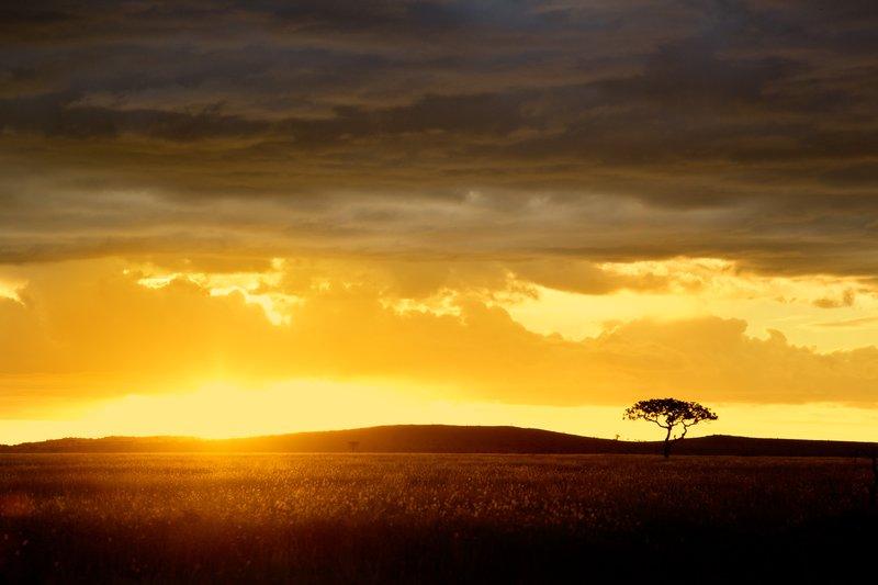 large_Sunset_over_Seronera_9.jpg