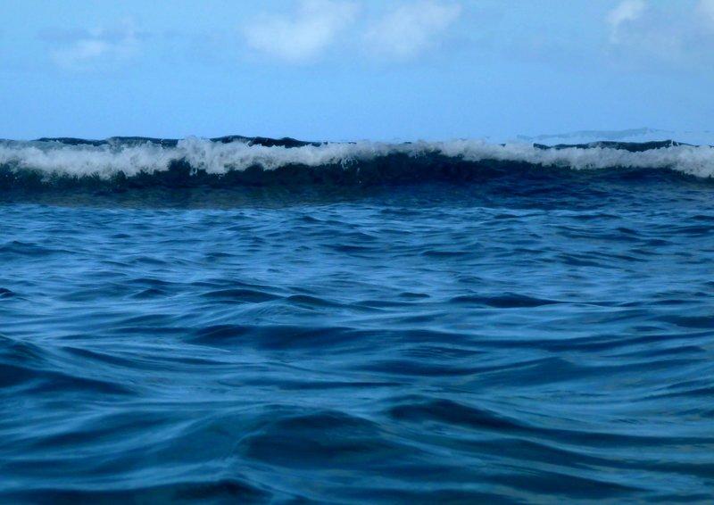 large_Swimming_9.jpg