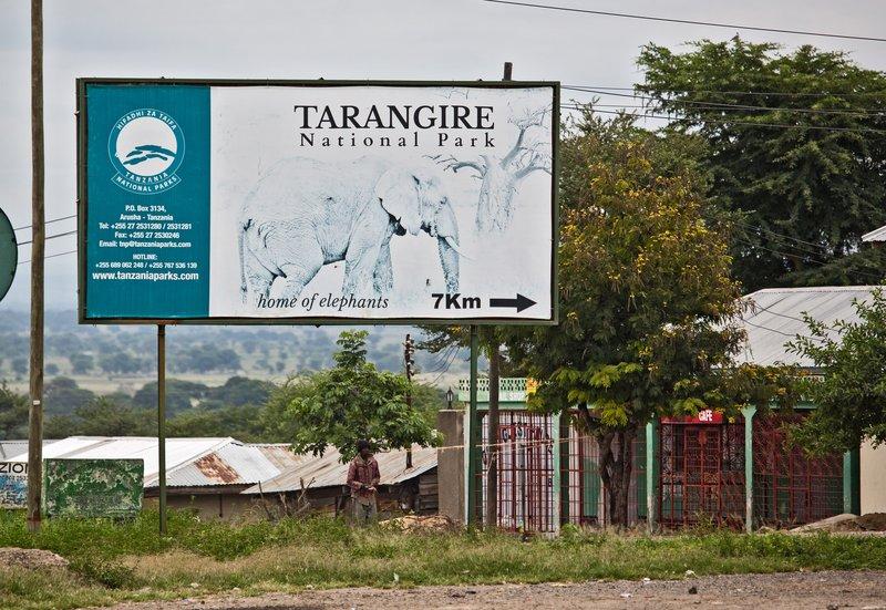 large_Tarangire_National_Park_1.jpg