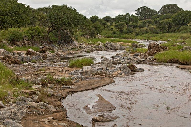 large_Tarangire_River_1.jpg