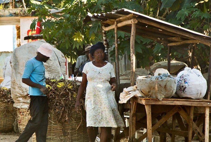 large_The_Journey_to_Jacmel_17.jpg
