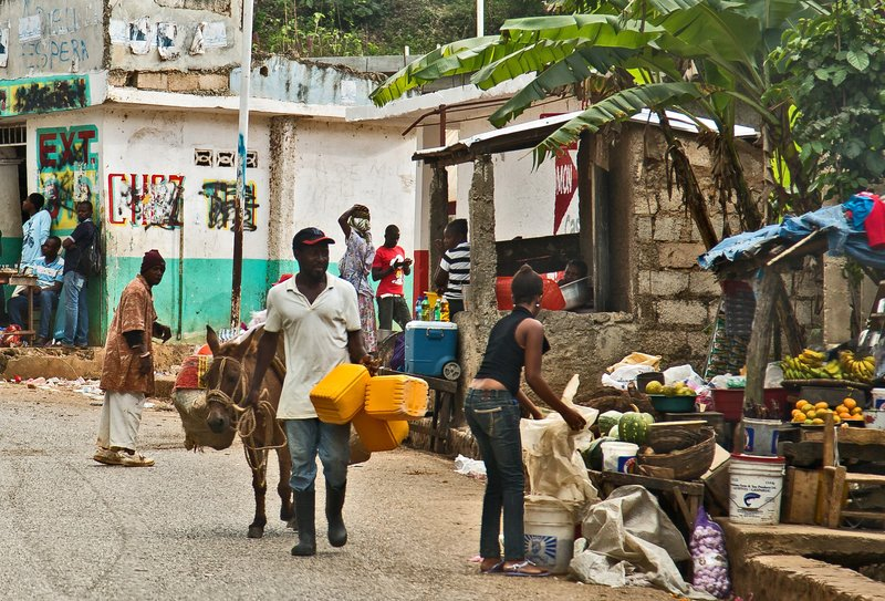 large_The_Journey_to_Jacmel_19.jpg