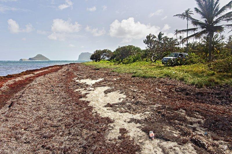 large_The_Reef_Beach_3.jpg