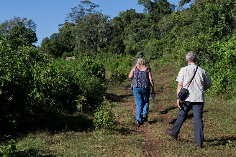 large_Walking_Safari_6.jpg