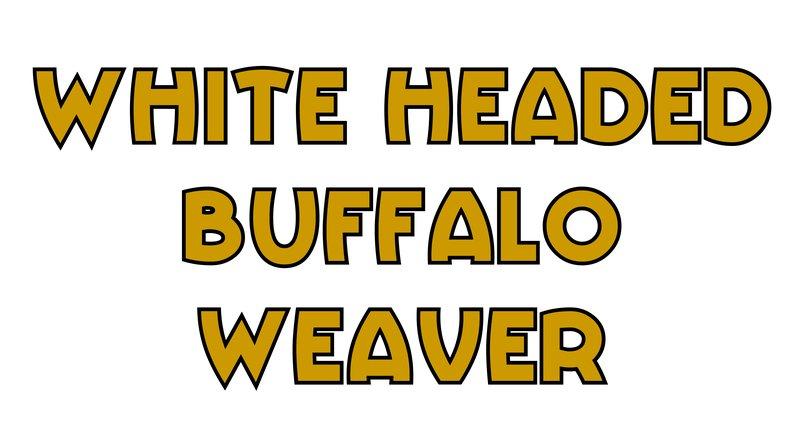 large_White_Head..falo_Weaver.jpg