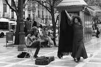 Free Flamenco