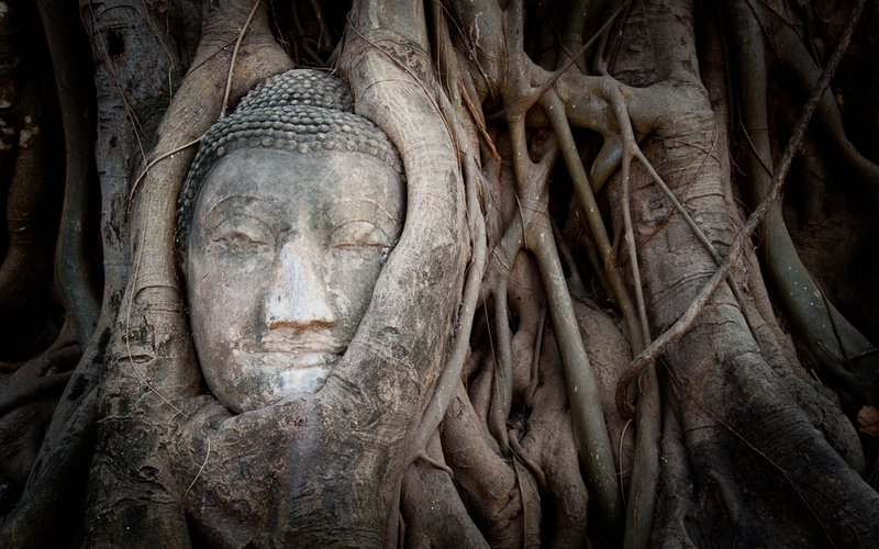 Budha Statue in Tree Roots, Ayutthaya, Thailand