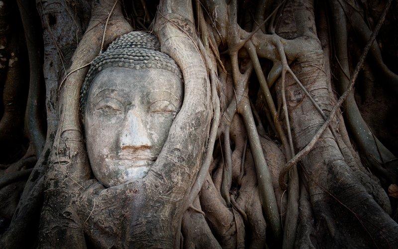 Budha Statue in Tree Roots, Ayutthaya, Thailand