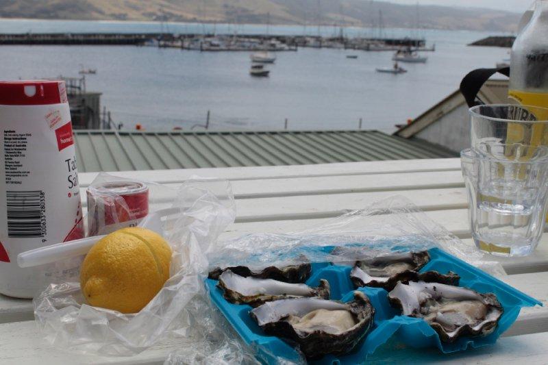 De eerste Australische oesters!!