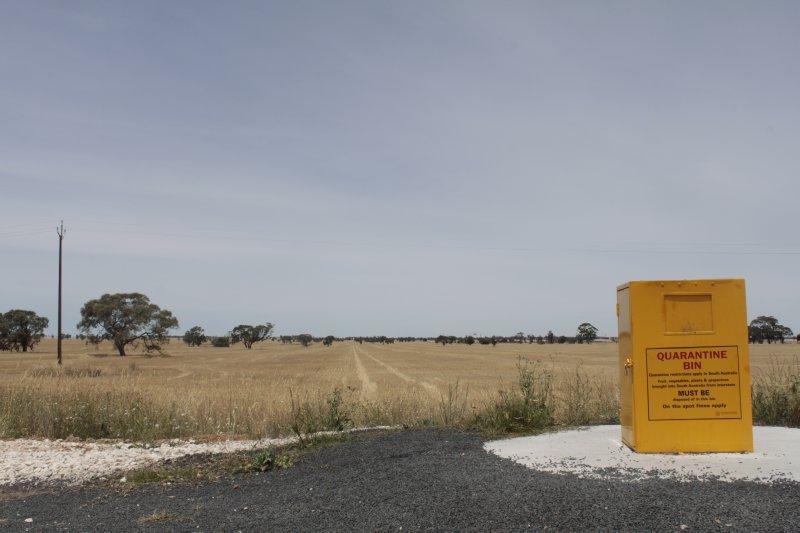 bij het binnenrijden van de staat South Australia, krijg je deze melding: groenten en fruit uit een andere staat mogen niet binnen gebracht worden. Bummer voor de budgetreizigers die we zijn met een volgestouwde koelkast... De tweede keer waren we wel niet zo braaf.