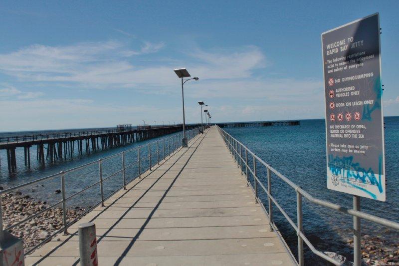 Ziehier de pier waaronder we zijn gaan duiken om de leefy seedragen te spotten. Jammer genoeg niet gezien, maar wel een grote pijlstaartrog (stingray): foto hieronder komt wel uit het Sydney acquarium aangezien we geen onderwatercamera hadden...