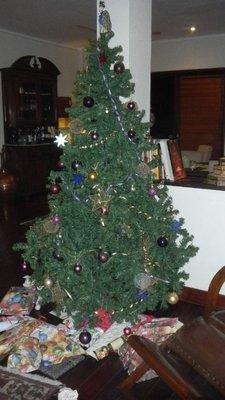 Christmas with the Masoners