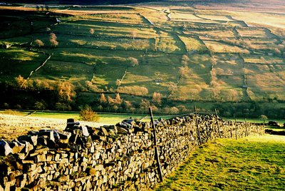 Evening light in winter, Swaledale (Yorks)
