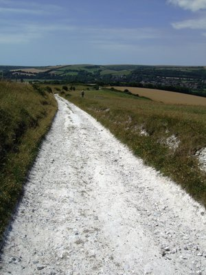 Chalk footpath over the South Downs