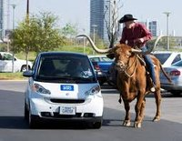 Texas_Cowboy.jpg