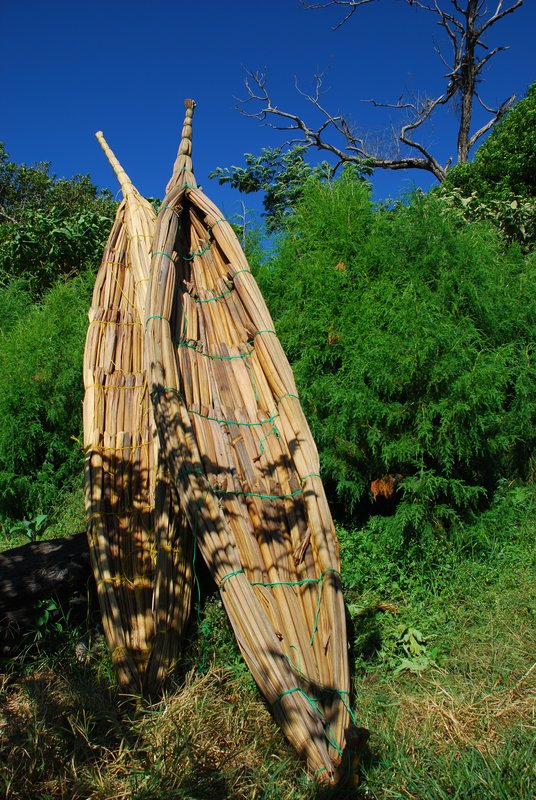Papyrus Boats - Lake Tana