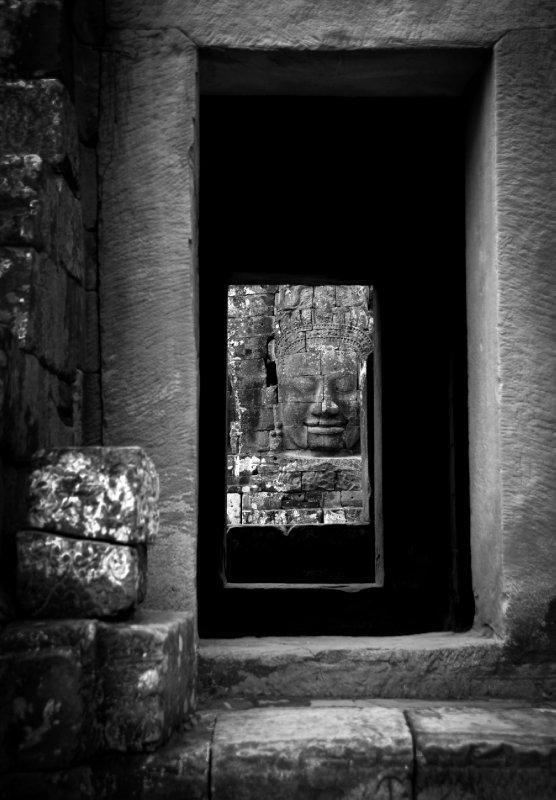 Looking Through