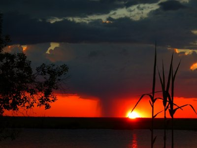 5. Sunset from camp, Chobe National Park