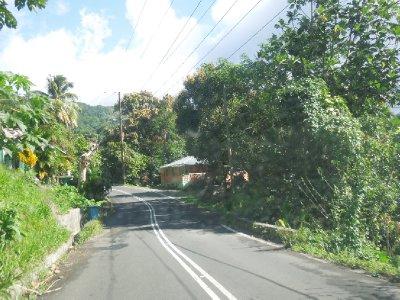 Dominica 086