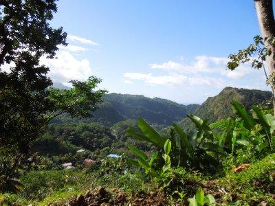 Dominica 090