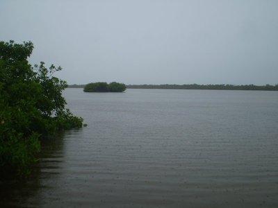 Raiiiiiiiny lagoon.