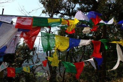Prayer_flags.jpg