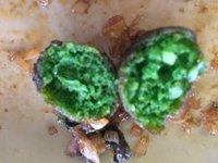 Spinach_balls.jpg