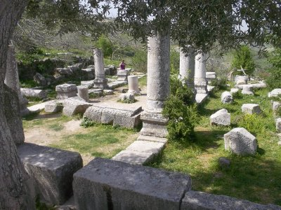 Ruins of antique sinagogue in Galilee (Isr)