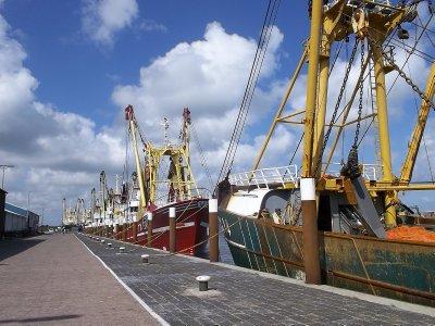 NL_Texel - Oudeschild Harbour