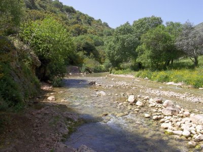 ISR_Upper Galilee - Dishon Creek