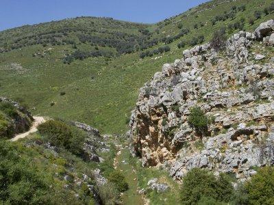 ISRAEL_Spring in Galilee