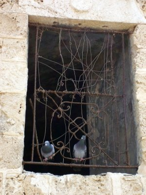 Window in Jaffa Harbour (Tel Aviv, Israel)