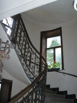 VIENNA_Schmelz, steps