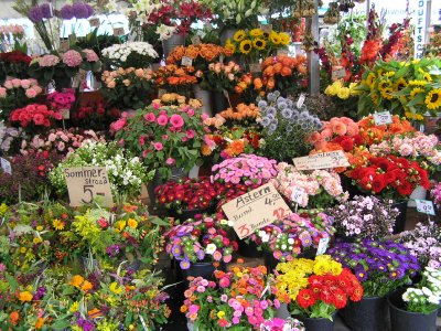 GERMANY - flowers at Munich's Market (Viktualienmarkt)