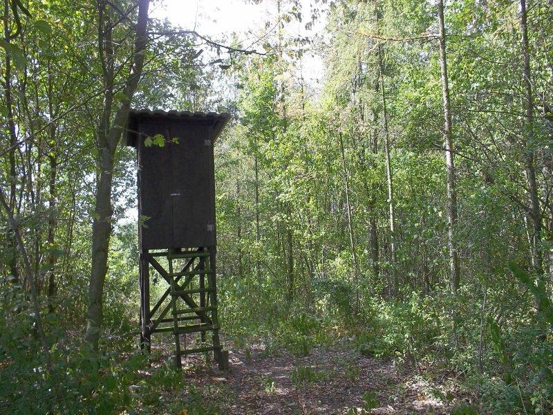 AU_NÖ_Hunting Stand