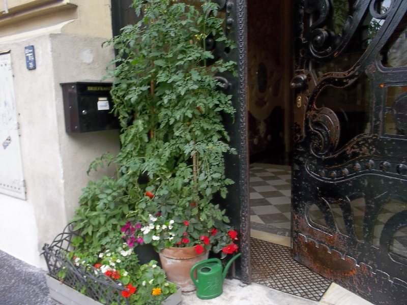 AUSTRIA_VIENNA_1st district - tomato door