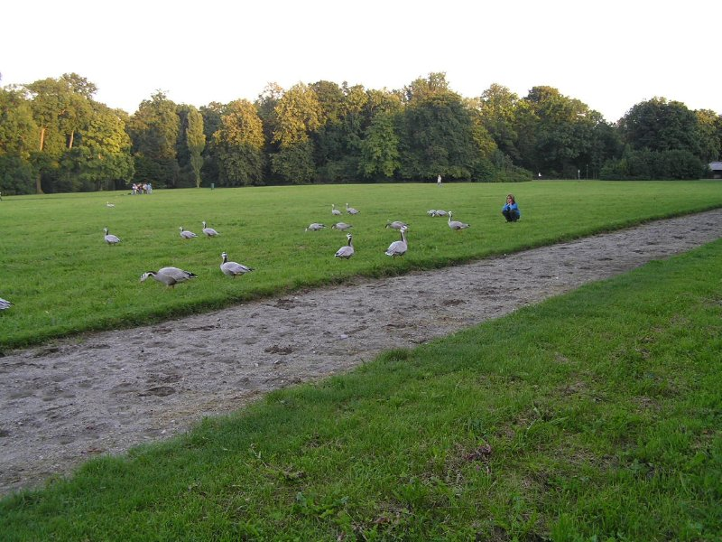 GERMANY_English Park in Munich (1)