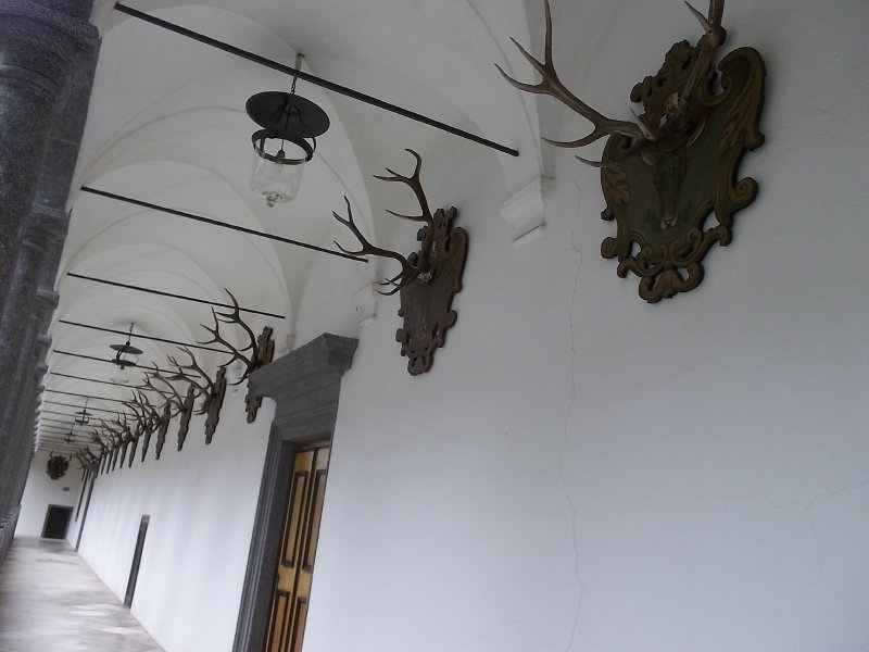 AUSTRIA_ trophies decor in inner yard of Schloss Greinburg
