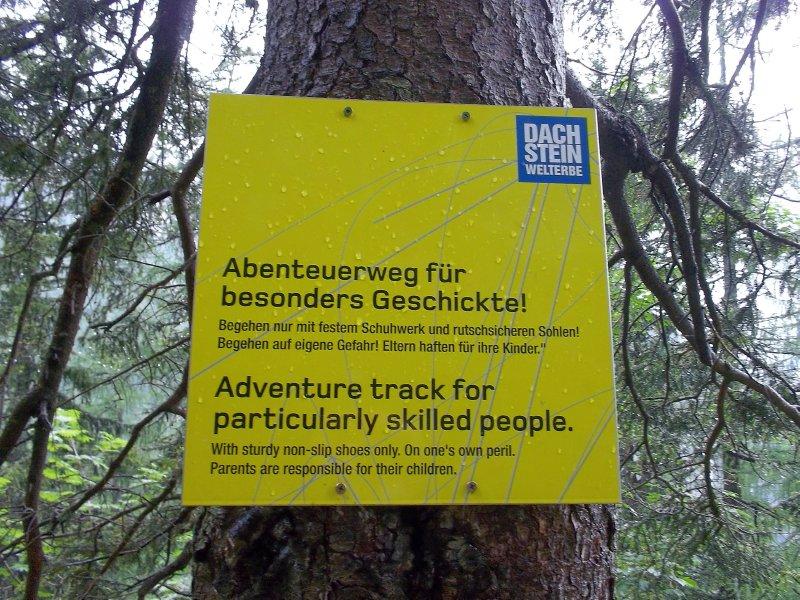 Track 4skilled ppl (Dachstein)