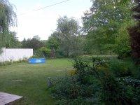 Monikas_garden__1_.jpg