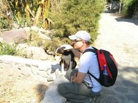 GUATEMALA - Lago Atitlan - San Marcos - we meet the dog