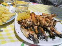 ITALY_Chioggia - Veneto food  (langoustine)