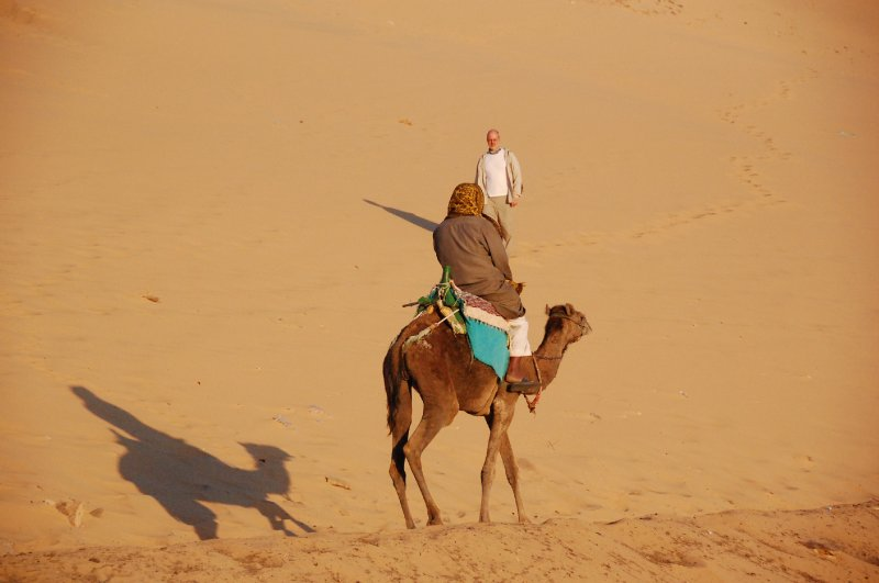 camel ride in aswan
