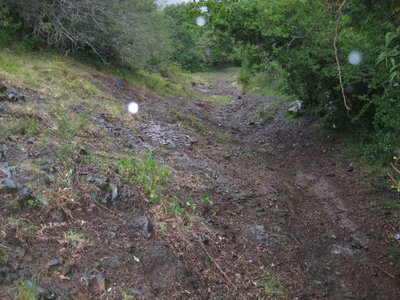 The mud hill from hell