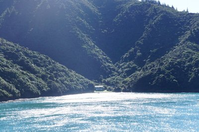 New_Zealand_2012_030.jpg