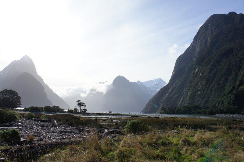 large_New_Zealand_2012_297.jpg